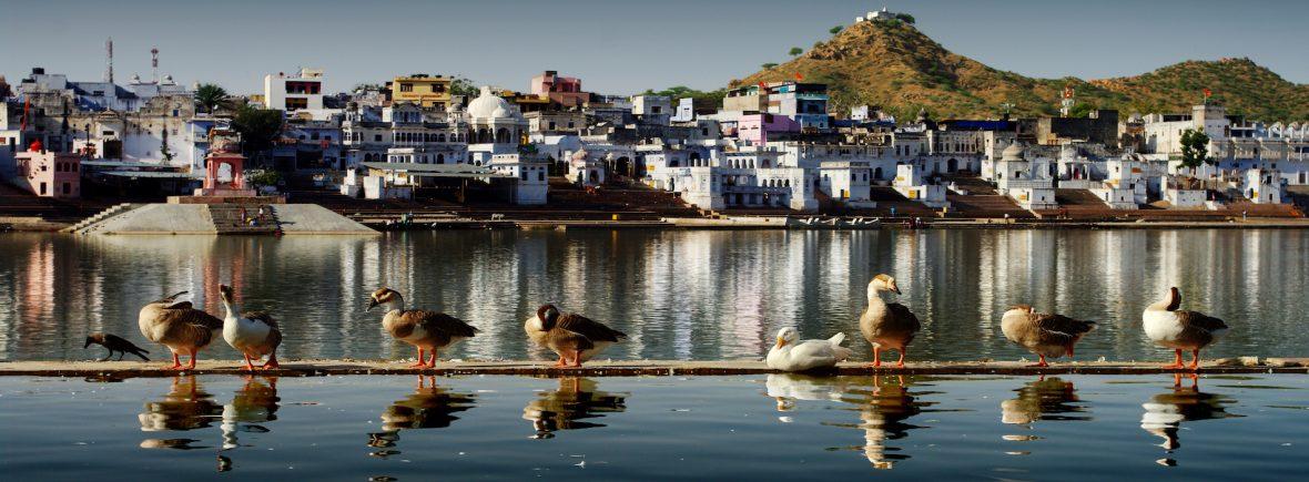 Viaggiare in India, Pushkar, il Lago sacro
