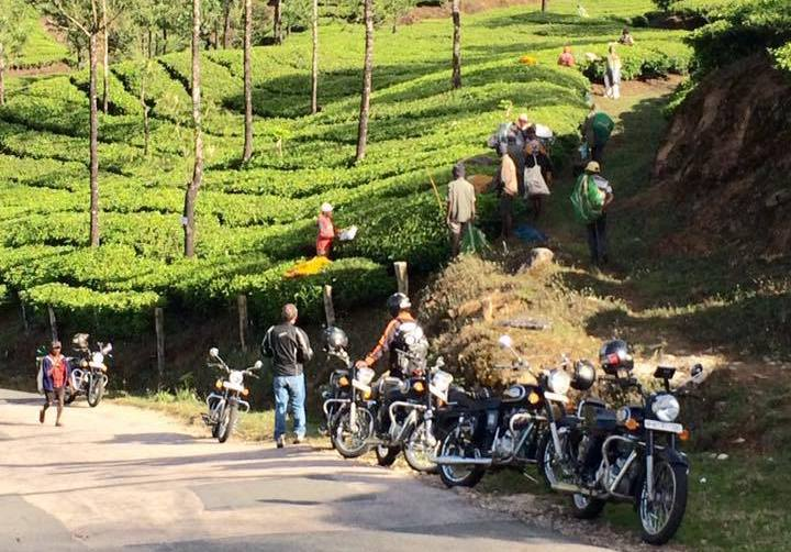 Viaggiare in India in moto | Kerala