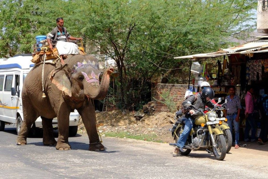 Viaggiare in India in moto | Traffico in Rajasthan