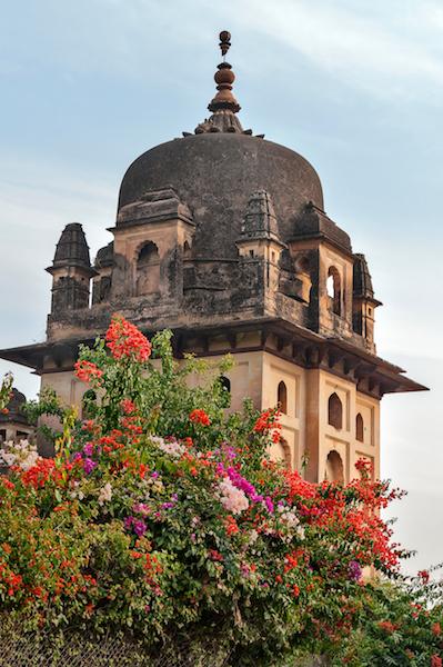 Viaggio ad Orchha | particolare | SusIndia